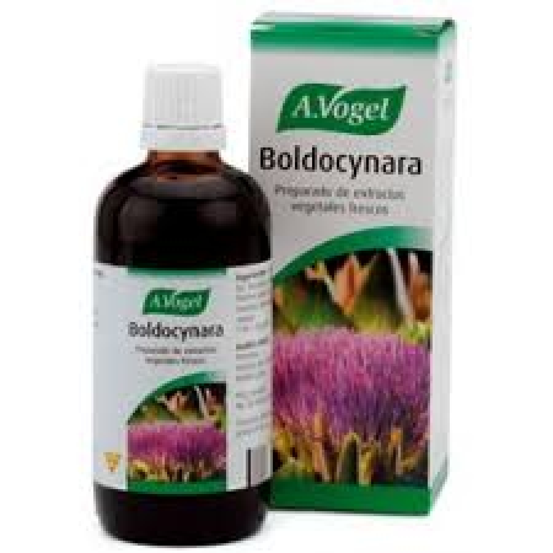 BOLDOCYNARA 100ML (A.VOGEL)